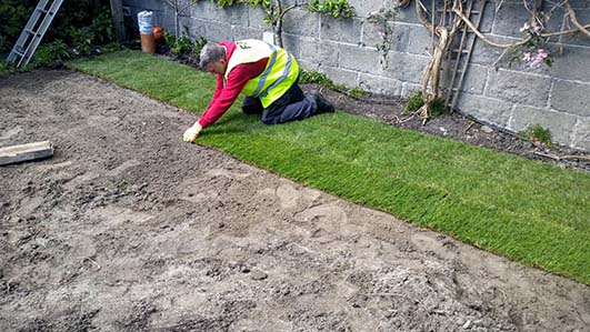 Laying Roll Out Lawn | Garden Design & Maintenance