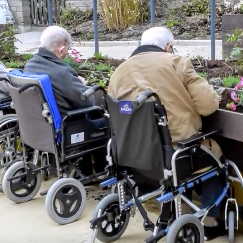 Wheelchair Accessible Planter